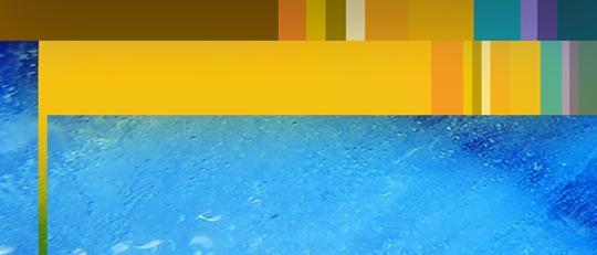 Freon2009_yellow_big