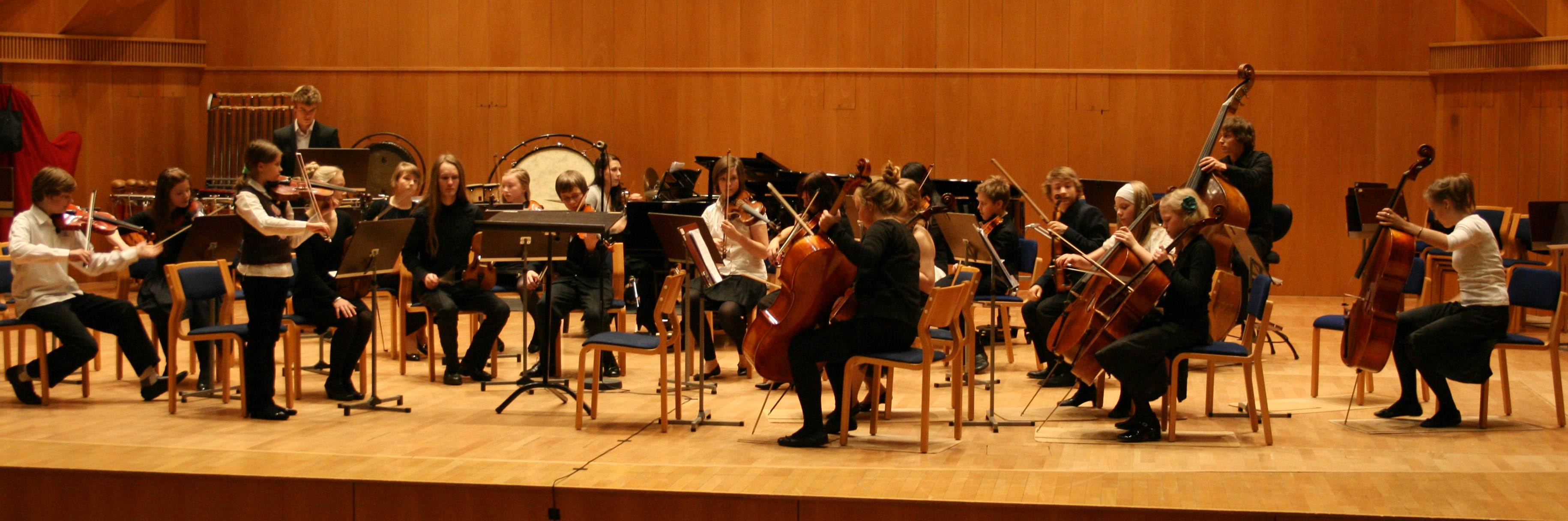 Orch.finlandese